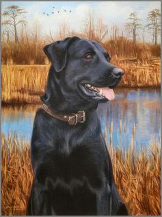 In His Element Painting - Labrador Retriever painting by Mike Roberts