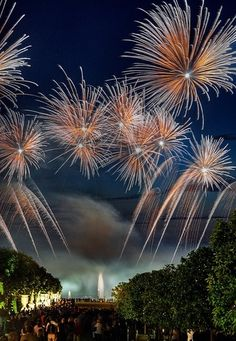 Fireworks over Palace of Versailles France  ~ BONNE ANNÉE 2014 ~HAPPY NEW YEAR 2014 TO ONE AND ALL!