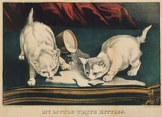 Currier & Ives (American, 1837–1907). My Little White Kitties into Mischief, 1871. The Metropolitan Museum of Art, New York. Bequest of Adele S. Colgate, 1962 (63.550.479) #cats