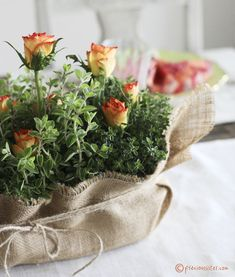 Lasting centerpiece | made from potted herbs and roses, burlap and twine wrapped