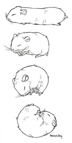 This sub is dedicated to hamsters and their humans. Hamster Kawaii, Robo Hamster, Hamster Cartoon, Hamsters As Pets, Cute Hamsters, Dwarf Hamsters, Cute Animal Drawings, Cute Drawings, Syrian Hamster