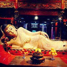 玉佛禅寺   Jade Buddha Temple à 上海市, 上海市