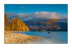 Autumn at the Lake Wanaka - Lake Wanaka, Otago