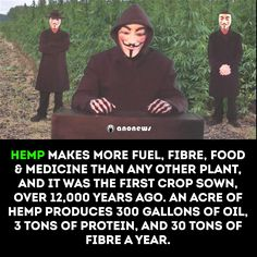 Benefits of hemp Weed Facts, Evil Empire, Natural News, Cbd Hemp Oil, Up In Smoke, Cool Inventions, Medical Cannabis, What Is Life About, The Cure