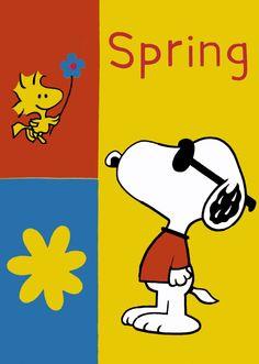 Joe Cool Spring