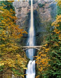 Multnomah Falls,  in Oregon.