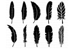 Feather SVG, Boho Feathers, Feathers Bundle SVG files for Silhouette Cameo and Cricut. Feather Clipart PNG included for Personal & Commercial Use. SVG can be Crow Feather, Feather Clip Art, Feather Design, Free Svg Cut Files, Svg Cuts, Svg File, Silhouette Cameo, Free Design, Ink