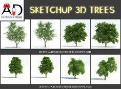 SKETCHUP 3D TREES