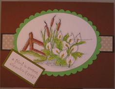 Gartenszwergs kreative Welt: Vorrat 11/ Stock 11