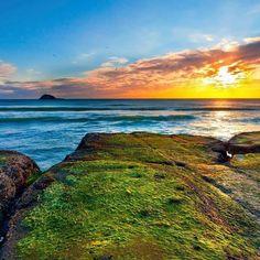 New Zealand  #newzealand #nuovazelanda #oceania #sea #ocean #mare #landscape #seascape #beautiful #travel #travelgram #travelblogger #viaggio #viaggiare #turista #tourist #gopro #iphone #photo #photography #photographer #photooftheday #picoftheday #follow4follow