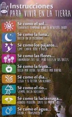 Ideas y Pensamientos ( Positive Mind, Positive Quotes, Positive Discipline, Positive Messages, Citation Gandhi, Message Positif, More Than Words, Spanish Quotes, Motivational Quotes In Spanish