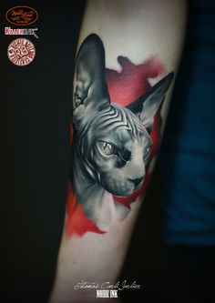 By Thomas Carli Jarlier done at Noire Ink tattoo Parlour