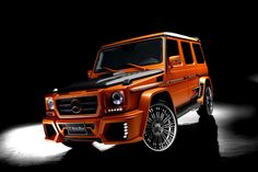 Mercedes-Benz G-Class Black Bison Edition by Wald