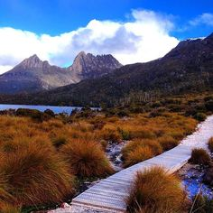 View of Cradle Mountain's peaks across the mirrored waters of Dove Lake inTasmania. Located in Cradle Mountain-Lake St Clair National Park Brisbane, Perth, Melbourne, Oh The Places You'll Go, Places To Travel, Places To Visit, Travel Around The World, Around The Worlds, Destinations