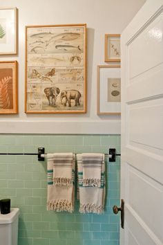 I like the idea of nature drawings and diagrams in the bathroom- how fun and quirky