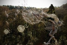 Staffordshire, England-based sculptor Robin Wight created these intricate wire sculptures after witnessing a real life fairy in person (More on that in a bit.) The stainless steel fairies, despite the tough material that they're made from, appear to be graceful living, breathing creatures at play with dandelions. Wight masterfully contorts and manipulates the wire so […]