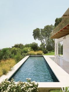Limestone coping borders the lap pool | archdigest.com