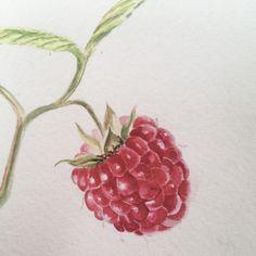 Watercolor by Volkova Tatiana ARTtribut