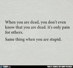 When you are dead, you don't even know that you are dead (Funny People Pictures) - #dead #pain #stupid
