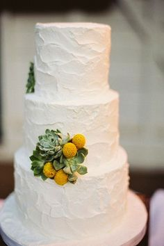 White cake with succulents and billy buttons