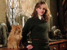 harry potter and the goblet of fire harry - Google zoeken