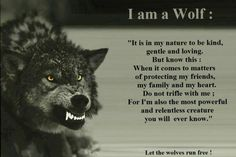 Here is Wolf Quote Ideas for you. Wolf Quote lone wolf love this great quote im wolfy all the way. Wolf Pack Quotes, Lone Wolf Quotes, Wolf Qoutes, Be Wolf, Wolf Love, Wisdom Quotes, Me Quotes, Family Quotes, Strong Quotes