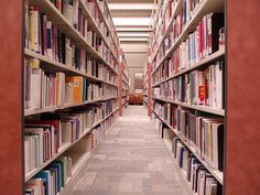 How to be a Librarian Assistant