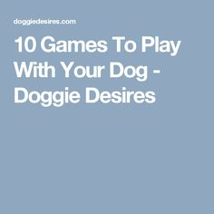 10 Games To Play With Your Dog - Doggie Desires
