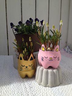 süße Blumentöpfe für Perlhyazinthen