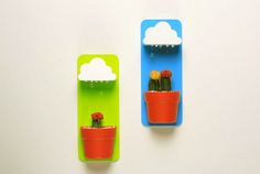 Little Clouds Delightfully Water Potted Houseplants