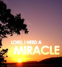 God, I Need a Miracle Right Now!  Jesus knows your pain and desires you to call out to Him for help. In one time or another we find ourselves with a desperate need. A need that is so strong only a supernatural intervention can suffice. It may be that you need a miracle of deliverance from addiction, healing from sickness or injury, help with financial burdens, restoration of a relationship, freedom from sin, or another sorrow of turmoil. Whatever miracle you are seeking, it can only be…