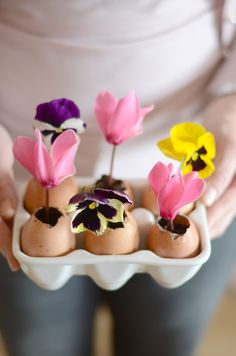 Let the kids create their own little gardens if space is limited for a Easter hunt...