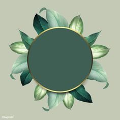 Round foliage frame on green background vector | premium image by rawpixel.com Framed Wallpaper, Flower Background Wallpaper, Background Vintage, Background Patterns, Background Images, Pretty Backgrounds, Summer Backgrounds, Flower Backgrounds, Wallpaper Backgrounds
