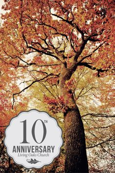10th Anniversary | Poster Idea | Created By The LOCC Communications Team  |  © 2014 Living Oaks Community Church. All Rights Reserved.