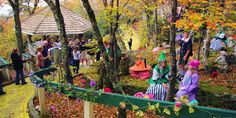 "abandoned Wizard of Oz Theme Park in North Carolina opens once a year for ""Autumn of Oz"""
