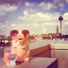 #Summer has finally arrived in #Cologne. Many #cheers from our #cool #ceramics #Pig jar. One of our #favourite pieces from #SugarTrends! Available at www.sugartrends.com/Lisbon/pura-cal #pigjar #ceramicsjar #lisbon #puracal #sunny #sun #terrace #rooftop #coolpig #stylishpig #shopsmall #shoplocal Lisbon, Cologne, Rooftop, Cheers, Terrace, Jar, Ceramics, Disney Princess, Cool Stuff