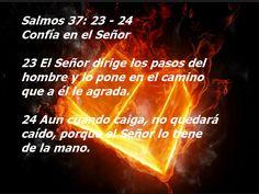 La Biblia La Palabra De Dios Para Hoy: Lectura-biblica-de-hoy-y-reflexion-Salmos-37-23-24...