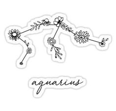 Aquarius Zodiac Wildflower Constellation Sticker