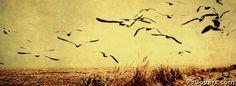 vintage birds landscape Facebook Cover
