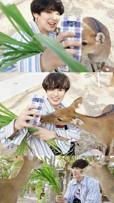 Chanyeol with deer