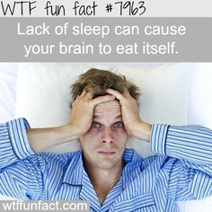 Why you should get enough sleep - WTF fun fact