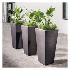 "West Elm Grooved Planter, Caviar Black, 15"" ($244) ❤ liked on Polyvore featuring home, outdoors, outdoor decor, black, black plastic planters, west elm, outdoor patio decor, plastic planters and west elm planters"