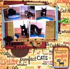 "Scrapbook Layout Con WRMK ""Friends Furever"" Cat Lovers, Layouts, Blog, Kitty, Scrapbook, Friends, Cats, Cute, Little Kitty"