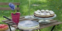 Coffee and Poppy seeds Cheesecakes! Best Cheesecake, Cheesecakes, Tiramisu, Poppy, Seeds, Coffee, Ethnic Recipes, Desserts, Kaffee