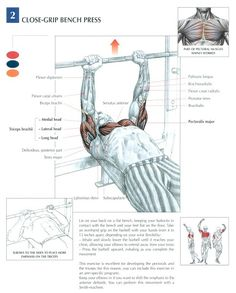 Close-grip bench press ~ Re-Pinned by Crossed Irons Fitness