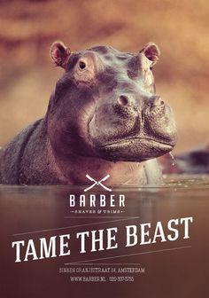 Barber Hippo