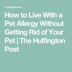 How to Live With a Pet Allergy Without Getting Rid of Your Pet | The Huffington Post