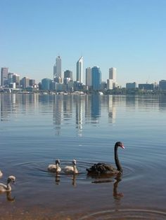 Swan River with Perth, Capital city of Western Australia in background