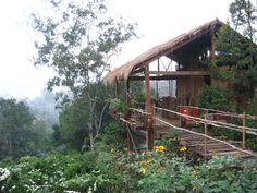 Tree Lodge (Sen Monorom, Cambodia) - Campground Reviews - TripAdvisor