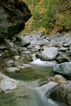 Hike Blue Creek in northwest California.  Outside Willow creek